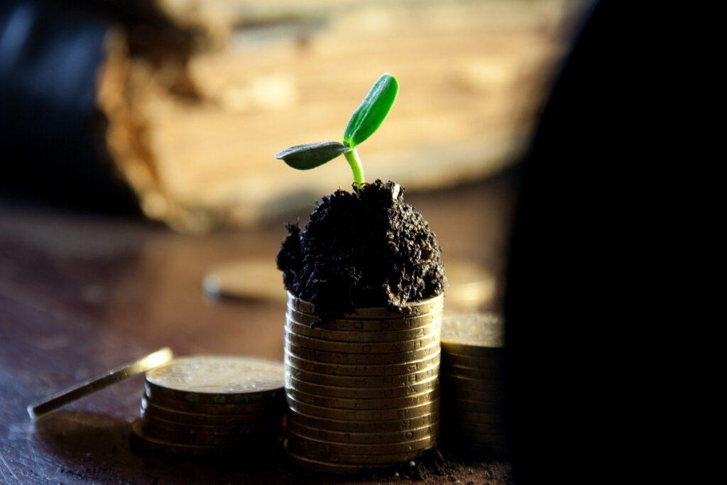 Wachstumskurs Diese 3 Mythen des Value Investing verhindern hohe Renditen 6